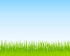 Vector clipart: Green grass and blue sky background. Spring nature