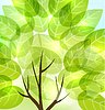 Vector clipart: abstract background with transparent leaves and