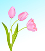 Vector clipart: Soft pink tulips on light blue sky spring background