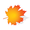 Vector clipart: Autumn maple leaf