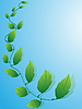 Vector clipart: green leaves on blue