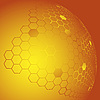 Honeycombs | Stock Illustration