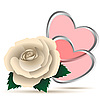 Vector clipart: White rose and hearts