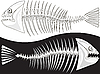 Vector clipart: Bones of skeleton of fish