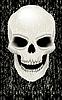 Vector clipart: Human skull zombie