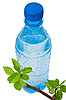 ID 3044351 | Bottle of water with green apple branch | High resolution stock photo | CLIPARTO