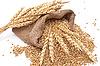Rozrzucone worek z ziarnem pszenicy | Stock Foto