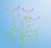 Векторный клипарт: растительный дизайн