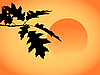 Vector clipart: autumn leaves