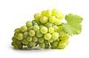 White grapes   Stock Foto