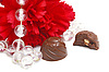 Chocolate and flower | Stock Foto