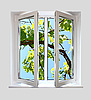 ID 3041906 | Open plastic window with kind on grape-vine | High resolution stock photo | CLIPARTO