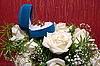 Wedding rings in blue box and roses | Stock Foto