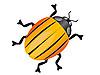 Векторный клипарт: Колорадский жук