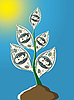 Vector clipart: plant from one hundred dollar notes
