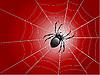 Векторный клипарт: паука на замуж