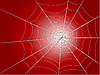 Vector clipart: spider wed