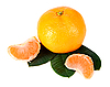Tangerine with green leaves   Stock Foto