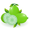 Vector clipart: lime