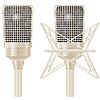 Vector clipart: microphone