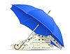 concept of protected and insured dollars umbrella