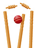 Vector clipart: cricket ball caught in wicket