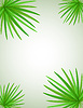 Vector clipart: palm branch
