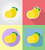 Vector clipart: lemon fruits flat set icons with shadow