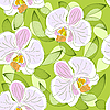 Vector clipart: Seamless floral pattern with orchids