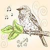 Vector clipart: sparrow bird sitting on branch