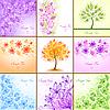 Set von 9 floralen Hintergründen | Stock Vektrografik