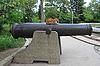 Photo 300 DPI: Cat on cannon