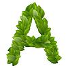 Ein Brief von grünen Blättern Alphabet