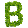 Buchstabe B der grünen Blätter Alphabet