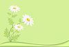 Векторный клипарт: Луг с ромашки, зеленого фона