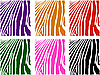 Vector clipart:  color zebra skin set