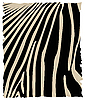 Zebra | Stock Vector Graphics