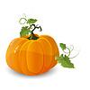 Векторный клипарт: тыква к Хэллоуину
