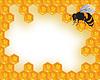 Векторный клипарт: Пчелы и соты с медом