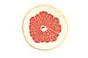 Slice of Grapefruit   Stock Foto