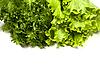 Salad Leaves | Stock Foto