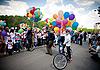 Festival Bosco di Ciliegi | Stock Foto