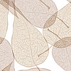 Vector clipart: background of autumn leaves