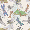 Vector clipart: seamless background with insects