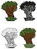 set of oak trees