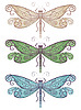Vector clipart: three dragonflies