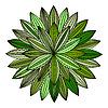 Векторный клипарт: цветочный дизайн элементов