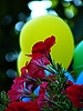 ID 3043642 | Flowers against an yellow air balloon | High resolution stock photo | CLIPARTO
