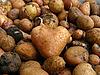 Potato in form of heart | Stock Foto