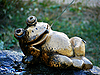 Photo 300 DPI: toad has rest together with fly